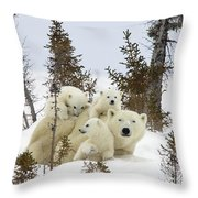 Polar Bear Ursus Maritimus Mother And Cubs Throw Pillow