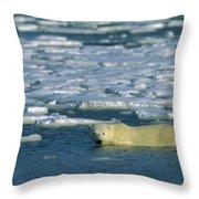 Polar Bear Wading Along Ice Floe Throw Pillow