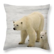 Polar Bear With Cub Throw Pillow