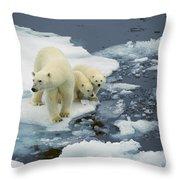 Polar Bear With Cubs On Pack Ice Throw Pillow