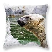 Polar Splash Throw Pillow