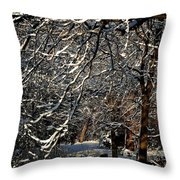 Polar Vortex Beauty Throw Pillow