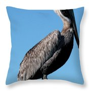 Pole With Pelican  Throw Pillow