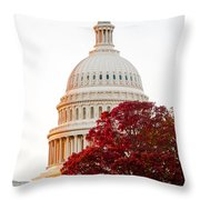 Politics Seeing Red Throw Pillow by Greg Fortier