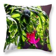 Polka Dot Easter Cactus Throw Pillow