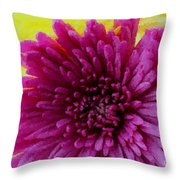 Polka Dot Purple Mum Throw Pillow