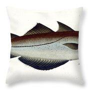 Pollack Throw Pillow by Andreas Ludwig Kruger