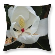 Pollen Party Throw Pillow