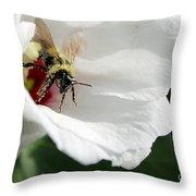 Pollenated Bumblebee Throw Pillow