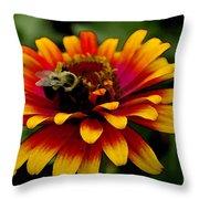 Pollenating Bumblebee Throw Pillow