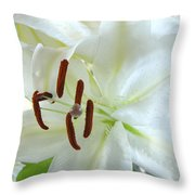 Pollinated White Tiger Lily Throw Pillow