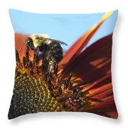 Pollinating Sunflower Seeds Throw Pillow