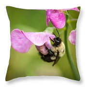 Pollination Nation Viii Throw Pillow