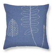 Polypodium Scottii Throw Pillow
