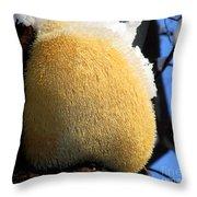 Pom Pom Mushroom Throw Pillow