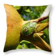 Pomegranate Bug Jewel Case Throw Pillow