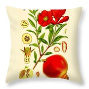 Pomegranate Throw Pillow by Georgia Fowler