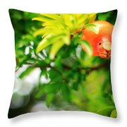 Pomegranate On A Tree Throw Pillow