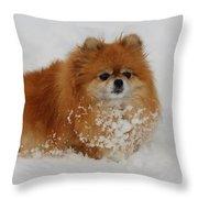 Pomeranian In Snow Throw Pillow
