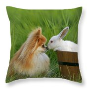 Pomeranian With Rabbit Throw Pillow