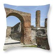 Pompeii 6 Throw Pillow