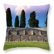 Pompeii Walls And Trees Throw Pillow