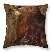 Ponce Inlet Hawk Throw Pillow