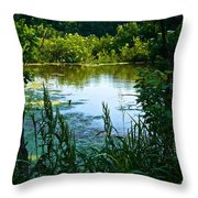 Pond 1 Throw Pillow