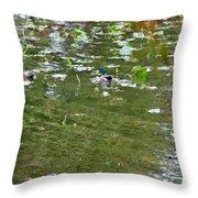 Pond 4 Throw Pillow
