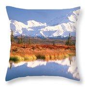 Pond, Alaska Range, Denali National Throw Pillow