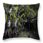 Pond Apple Throw Pillow