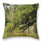 Pond At Norfolk Botanical Garden 10 Throw Pillow