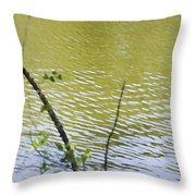 Pond At Norfolk Botanical Garden 8 Throw Pillow