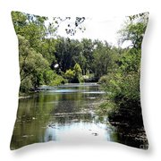 Pond At Tifft Nature Preserve Buffalo New York  Throw Pillow