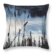Pond At Twilight Throw Pillow