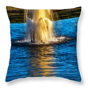 Pond Fountain Throw Pillow
