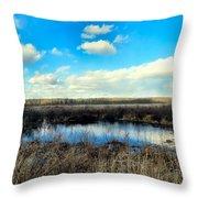 Pond Hole Throw Pillow