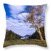Pond House Views Throw Pillow