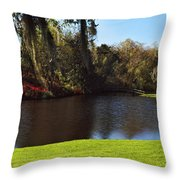 Pond In A Garden, Middleton Place Throw Pillow