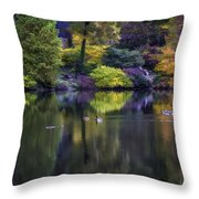 Pond In The Park Oil Paint  2721gop   Throw Pillow