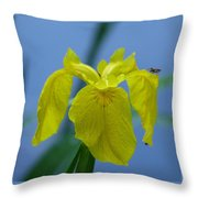 Pond Iris Throw Pillow