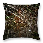Pond Of Reflection Throw Pillow
