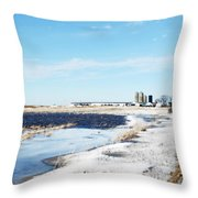 Pond Or Field Throw Pillow