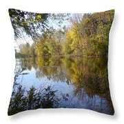 Pond Reflection At Limehouse Ontario Throw Pillow