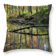 Pond Reflects Throw Pillow