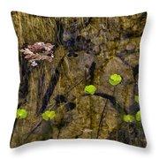Pond Scene Throw Pillow