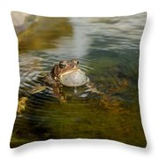 Pond Song Throw Pillow