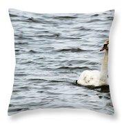 Pond Swan Throw Pillow