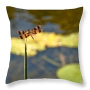Pond Visitor Throw Pillow