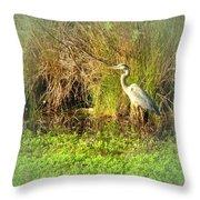 Pond Wildlife Throw Pillow